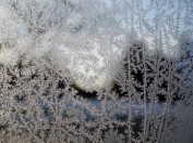 Close-up of jackfrost on a window. Intricate fingers of pretty ice patterns