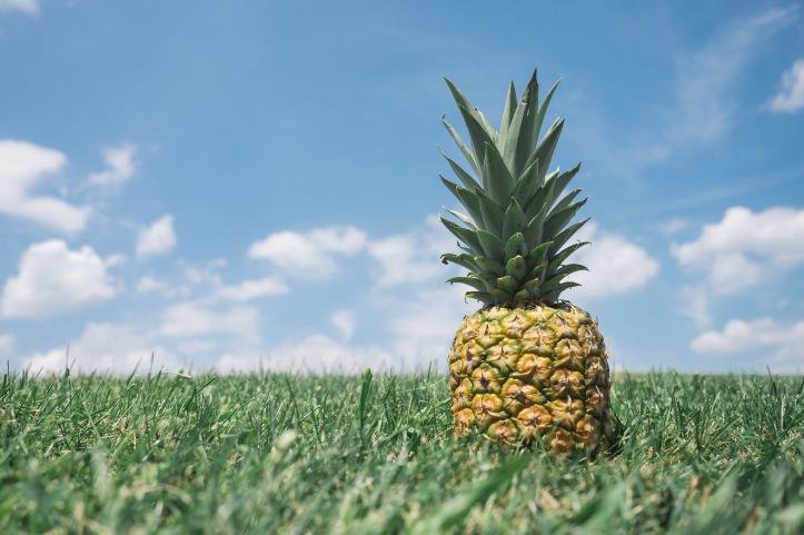 pineapple-867245_1920