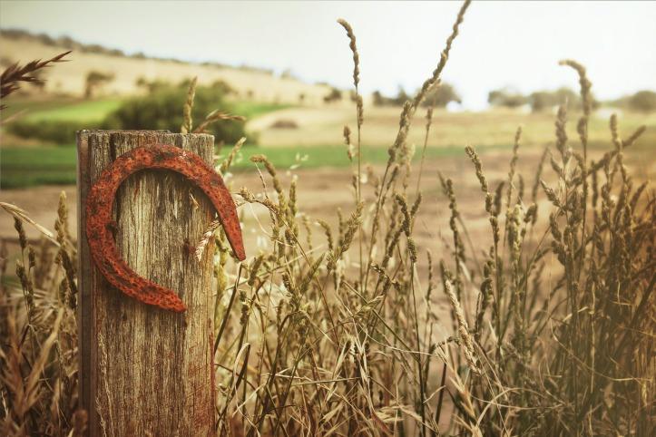 horseshoe-504821_1920