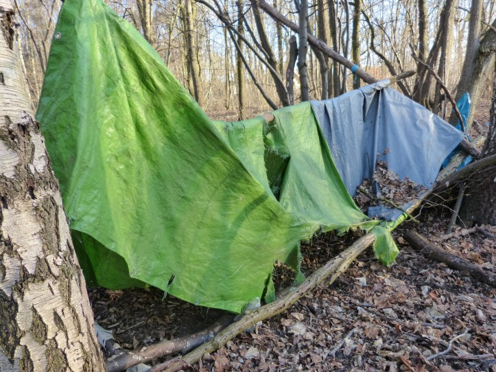 Green and blue bivouacs draped over a tree branch in the woods. They are very tattered and offer little shelter.