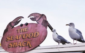 A pink crab-shaped sign with orange writing saying 'The Seafood Shack'. Next to it are two gulls poised for oppportunity.